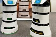 Coming to a store near you : Air Purifying Diya One robot set for 2016 market debut