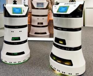 Robot-Diya-One