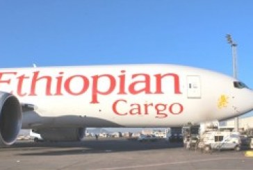 IATA says African air cargo growth tops rest of world