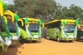 Wildlife authority gets buses to drive local tourism