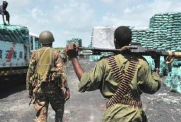 $10m Somali charcoal trade under scrutiny